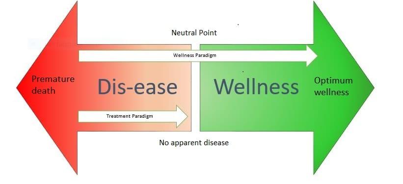 Holistic Health Approaches: the Way to Wellness   Holistic