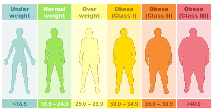 Depiction of individuals according to weight categories based on BMI