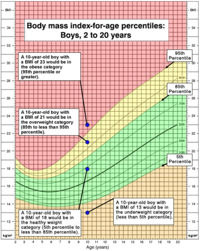 Interpretation of sample BMI numbers for a 10 year old boy